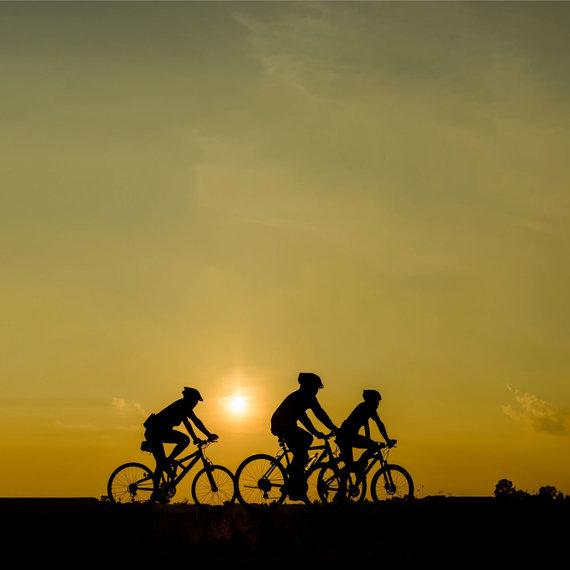 2 Bike 3
